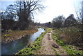 TQ5669 : River Darent and path by N Chadwick