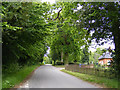 TM4585 : Pound Road, Sotterley by Adrian Cable
