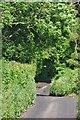 ST5264 : North Somerset : Kingdown Road by Lewis Clarke