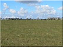 NZ0665 : Farmland southeast of Nafferton Farm (2) by Mike Quinn