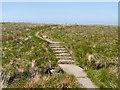SD9912 : Steps on the Pennine Way, Marsden Moor by David Dixon