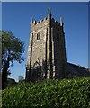 SX5390 : St Thomas' church, Sourton by Derek Harper