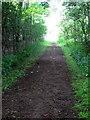 TL0034 : Bridleway to Park Farm by Philip Jeffrey