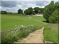 SE6083 : Steps to the visitor centre, Duncombe Park by Pauline E