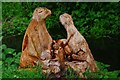 SO8377 : Wood carving of otters, Springfield Park, Kidderminster by P L Chadwick