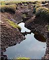 SK0887 : Peat bog conservation by Stephen Burton