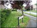 TL2513 : Broomhills, Panshanger by Christine Johnstone