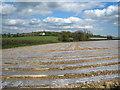 SX3380 : Plastic covered field at Trewarlett by Rod Allday