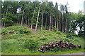 SE2668 : Pile of logs below Skell Bank Wood by Bill Boaden