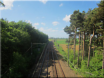 NU0937 : Looking north along the East Coast Mainline near Smeafield by Graham Robson