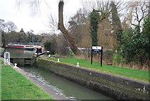 TL4311 : Parndon Mill Lock by N Chadwick