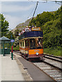 SK3455 : Victoria Park Halt, Crich Tramway Village by David Dixon
