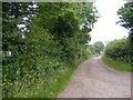 TM4682 : Green Lane Byway to Frostenden by Geographer