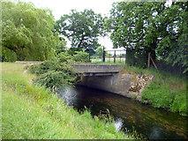 TQ2172 : Richmond Park:  Disused bridge over Beverley Brook by Dr Neil Clifton