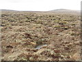 NB2836 : Blanket bog by the Rathad a' Phentland by M J Richardson