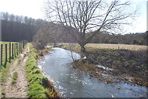 TQ5567 : Darent Valley Path by the River Darent by N Chadwick
