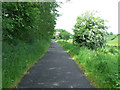 NS3964 : National Cycle Network Route 75 by Thomas Nugent