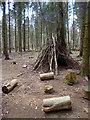 SU7295 : Brushwood Shelter in Cowleaze Wood by Des Blenkinsopp