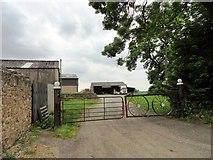 NZ3536 : Entrance to Kelloe Hall Farm by Robert Graham