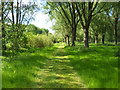 TL1697 : Footpath in Thorpe Meadows, Peterborough by Paul Bryan