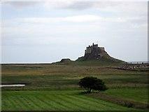 NU1341 : Lindisfarne Castle by James Denham