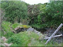 SN7313 : Bridge Out on the Cefnbrynbrain cyclepath by Nigel Davies