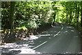 SD6289 : Bend in A683 as it passes through Park Wood by Roger Templeman