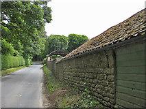 SE8067 : Cordike Lane by Pauline E