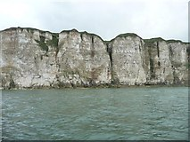 TA1974 : Bempton Cliffs, near Crab Rocks by Christine Johnstone