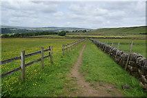 SD9825 : The Pennine Bridleway near Lower Rough Head by Bill Boaden