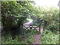 SS6505 : Clapper Cross from the woodland by the Taw by David Smith