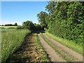 TL6732 : Tom's Lane, Finchingfield by Roger Jones