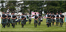 NJ0459 : European Pipe Band Championships 2013 (7) by Anne Burgess