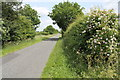 TF1862 : Green Lane towards Woodhall Spa by J.Hannan-Briggs