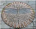 NT3367 : Pebble mosaic - dragonfly by Barbara Carr
