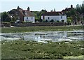 SU8003 : Bosham - houses on southern section of Shore Road by Rob Farrow
