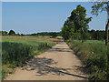 TL6929 : Bridleway near Great Lodge, Great Bardfield by Roger Jones