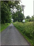 N2482 : Country Road near Longford by Darrin Antrobus