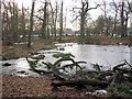 SP9713 : Clickmere Pond, Ashridge. with snow lying on ice (December 2009) by Chris Reynolds