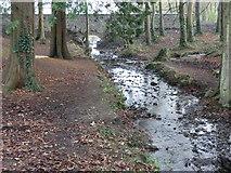 N9734 : Crodaun Stream meets tributary by Castletown House by jwd