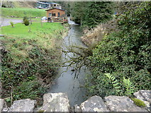 O1361 : Delvin River by The Naul, Co. Dublin by jwd