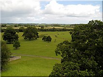 NZ0878 : View from Belsay Castle by David Dixon