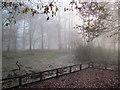 SP9713 : A Misty December day at Clickmere Pond, Ashridge (2010) by Chris Reynolds