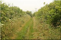 TA0609 : Barnetby bridleway by Richard Croft