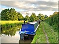 SP1765 : Narrowboat, Stratford-Upon-Avon Canal by David Dixon