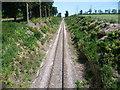 TQ7374 : Railway line seen from Buckland Road by Marathon