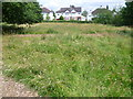 TQ1866 : Hay meadow in Fishponds Park by Marathon