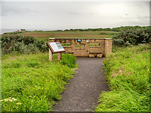 NZ4163 : Bird Hide and Information Board, Whitburn Point Nature Reserve by David Dixon