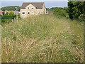SE3800 : Overgrown footpath by Alan Murray-Rust