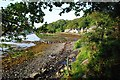 NR7894 : Path back to Crinan Harbour by Patrick Mackie